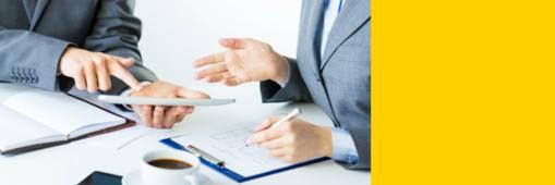 Soluzione per Aziende che offrono servizi di training/consulting